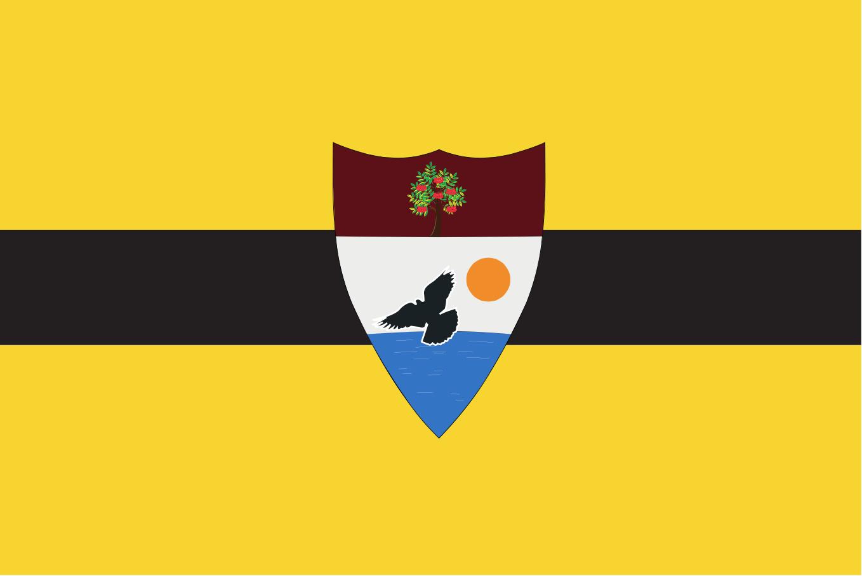 Die Flagge des neuen Staates Liberland